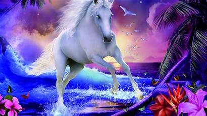 Unicorn Magical Desktop Tablet Unicorns Wallpapers Resolution