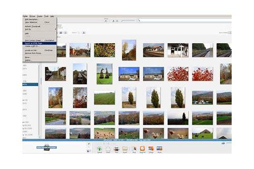 picasa free download windows 8