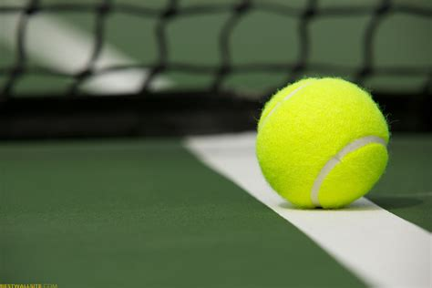 academy lawn image gallery tennis background