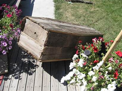 Coffin Mania Bascombe Rotted Boards End