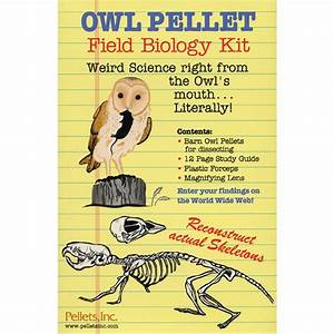 Barn Owl Field Biology Kit