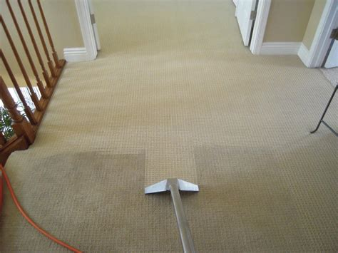 cleaning carpet how hot water extraction works for your carpet cleaning job