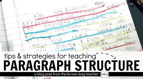 paragraph writing paragraph writing in 1st and 2nd grade the brown bag