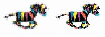 Raster Pixels Same Resolution Left Vector Zebra