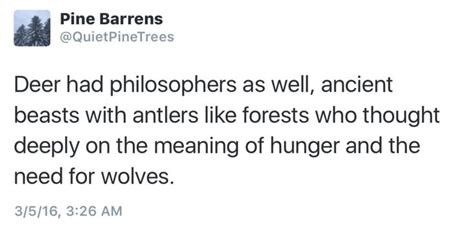 the meaning of the hunger 25 best ideas about antlers meaning on pinterest antler jewelry holder deer tattoo and deer