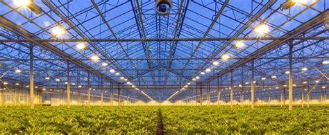 lade a led coltivazione indoor coltivazione indoor pro e contro
