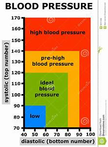 Blood Pressure Stock Illustration  Image Of Examination