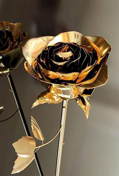 Gold Rose Wallpapers Roses Wallpapersafari Wallpaperscom Parallax