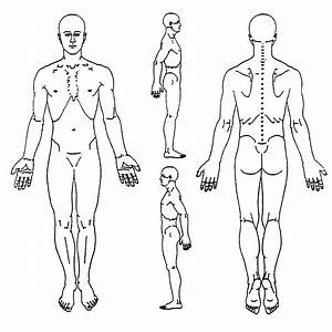 Body Assessment Forms