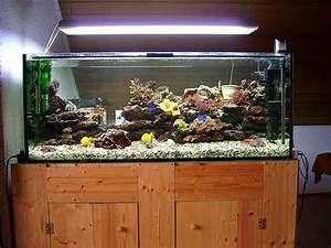Aquarium Unterschrank Bauen : wasserqualit t aquarium forum ~ Frokenaadalensverden.com Haus und Dekorationen