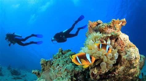 scuba diving   crystal clear waters  kas  antalya
