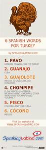Infographic  6 Spanish Language Words For Turkey