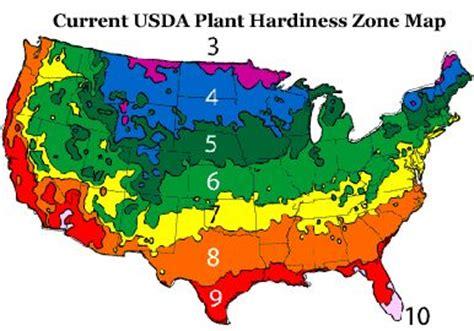 Zone 8  Gardening Pinterest