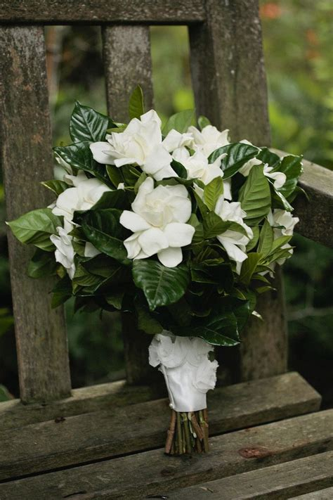 ideas  gardenia bouquet  pinterest