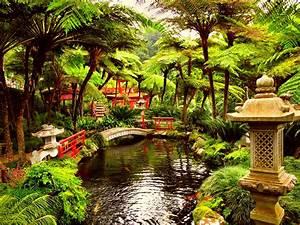 Spring Japanese Garden Wallpaper Hd » Outdoors Wallpaper 1080p