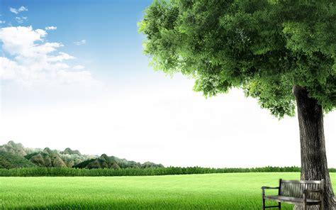 المناظر الطبيعية مقعد طبيعة Wallpaper