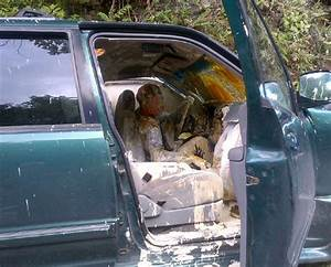 PICS: Driver and dog covered in paint after car crash ...