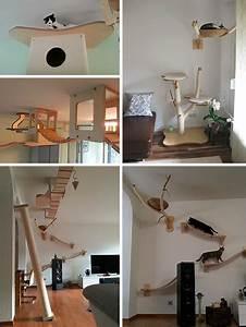 3D Cat Furniture SetModular Hangouts for Walls
