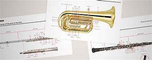 Learn The Parts Of The Instruments