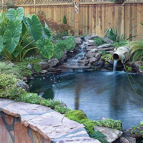 backyard oasis dig