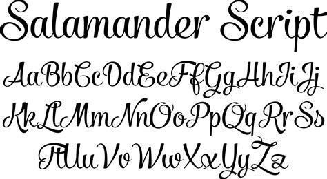 script fonts salamander script font by fenotype font bros drawing ideas pinterest