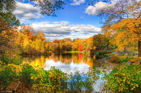 Fall Desktop Backgrounds New York by Fall Central Park New York Pixdaus