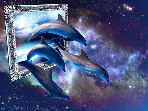delfines imagenes  fondos de delfines wallpapers
