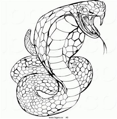 Cobra Coloring Snake Pages King Rattlesnake Royalty