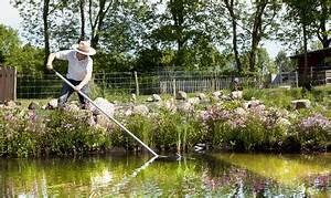 Hausmittel Gegen Fadenalgen Im Teich : die besten hausmittel gegen algen im teich algenambulanz ~ Watch28wear.com Haus und Dekorationen