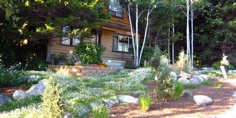 xeric landscaping logan wise pictures news information from the web