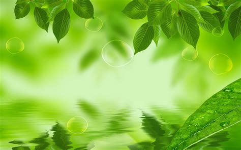 Free Nature Backgrounds by Green Nature Background 8 187 Background Check All