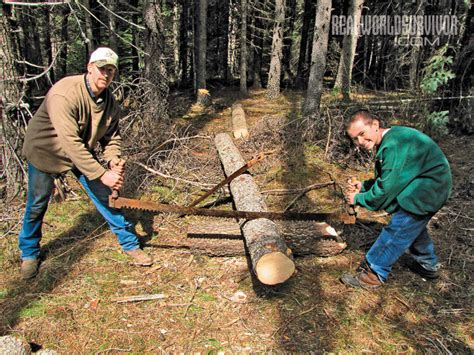 Caring For Crosscut Saws