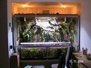 Pflanzen Für Terrarium : terrarium 3 ~ Orissabook.com Haus und Dekorationen