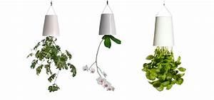 Boskke Sky Planter : ro liny do g ry nogami design your life ~ Orissabook.com Haus und Dekorationen