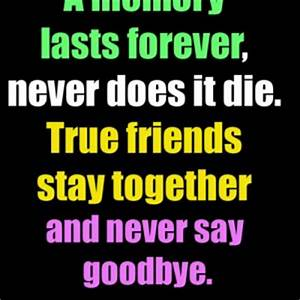 Goodbye Quotes For Friends QuotesGram