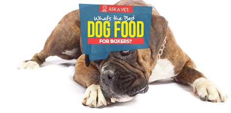 dog food  boxers  vet recommended brands