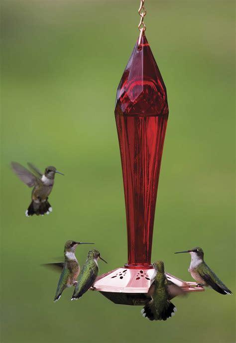 humming bird feed bird cages