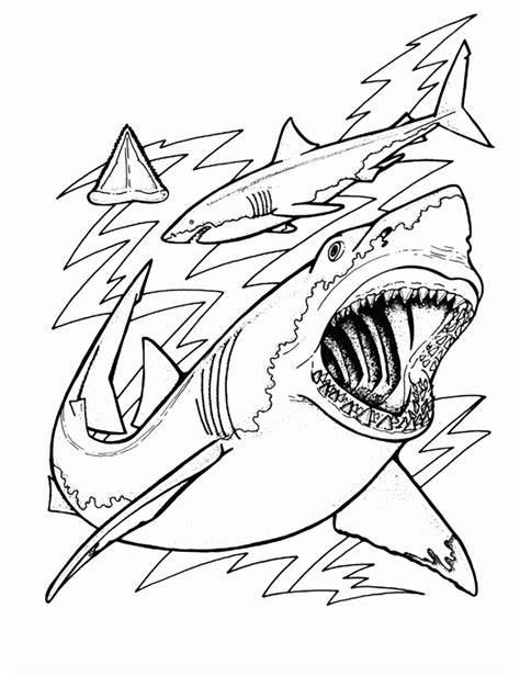 Coloring Shark by Free Printable Shark Coloring Pages For