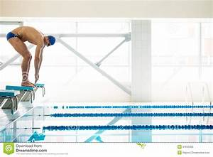 Pool Position : swimmer standing on starting block stock image image of ~ A.2002-acura-tl-radio.info Haus und Dekorationen
