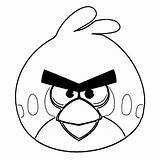 Angry Bird Coloring Legendary Birds sketch template