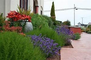 Mediterranean Garden Design: How to Create a Tuscan Garden