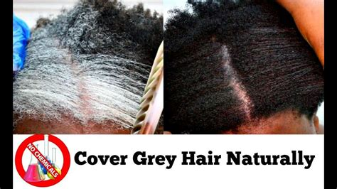 Hair Turning Naturally by How To Turn Grey Hair To Black Naturally At Home