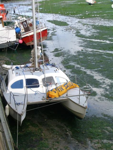 Catamaran A Vendre Pas Cher by Catamaran Occasion Belgique