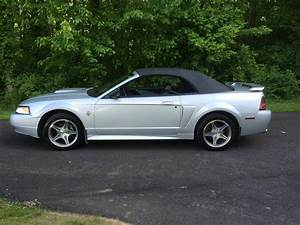 1999 Mustang Convertible For Sale | Convertible Cars