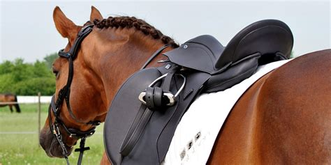 saddle fitting brands