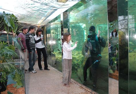 aquarium du perigord noir parc attraction aquariums le bugue 24260