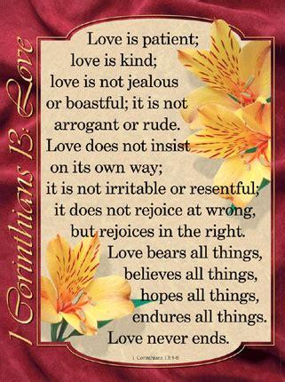 Love Is Not Rude The Romantic Vineyard