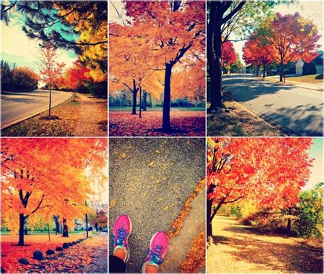 beautiful fall day simply taralynn
