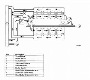 Need Hose Flow Diagram For 1998 Jaguar Vanden Plas