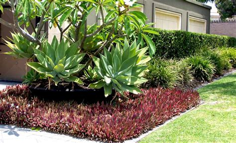 Gardening And Landscaping For Perth Homes